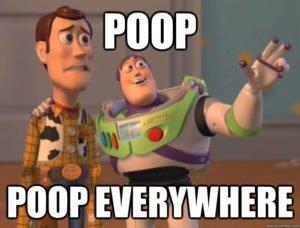 poop everywhere
